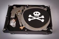 Череп с косточками и жестким диском от компьютера, концепцией безопасностью кибер стоковая фотография
