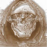 череп ужаса Стоковые Изображения