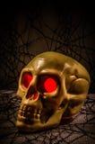Череп хеллоуина Стоковое Изображение