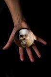 Череп хрустального шара Стоковая Фотография