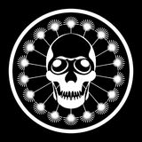 череп человека одуванчика Стоковая Фотография RF