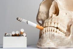 череп человека сигарет Стоковые Изображения