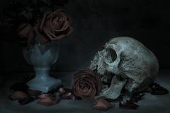 Череп человека натюрморта Стоковые Фотографии RF