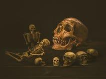 Череп человека натюрморта Стоковое Изображение RF