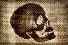 Череп человека покрасил коричневую краску на ткани Стоковая Фотография RF