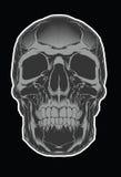 Череп шаржа декоративный человеческий также вектор иллюстрации притяжки corel Стоковые Фото