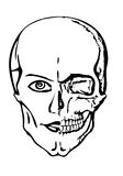 череп Стоковые Изображения