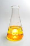 Череп Beaker науки Стоковое Изображение
