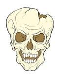Череп grinning вампира Иллюстрация цвета вектора a Стоковое фото RF