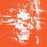 череп grunge предпосылки Стоковое Изображение RF