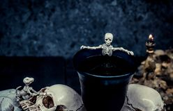 череп halloween Стоковые Изображения RF