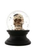 череп halloween Стоковое Изображение RF