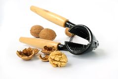 черкесские грецкие орехи стоковые фотографии rf