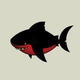Черная акула Стоковое Изображение RF
