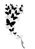 Черная бабочка, изолированная на белизне Стоковое Фото