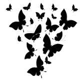 Черная бабочка, изолированная на белизне Стоковое фото RF