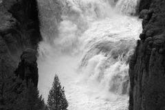 черная белизна водопада Стоковое Фото