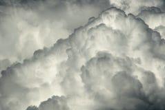 черная белизна подвеса Стоковое Фото