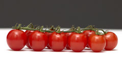 черная белизна томата ветви Стоковые Фото