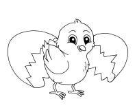 черная белизна цыпленока иллюстрация вектора