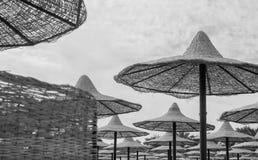 Черная белая группа в составе umrellas пляжа соломы Стоковое Изображение