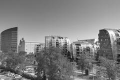 черная белизна города Стоковые Фото