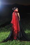 Черная вдова Стоковые Фотографии RF