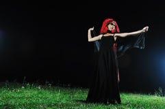Черная вдова Стоковая Фотография