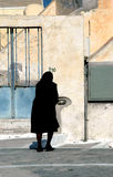 черная вдова Стоковое фото RF