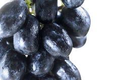 черная виноградина Стоковые Изображения