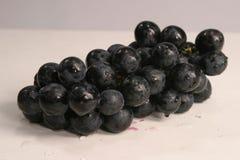 Черная виноградина на белой предпосылке Стоковые Фотографии RF