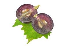 Черная виноградина при лист изолированные на белой предпосылке Стоковое фото RF