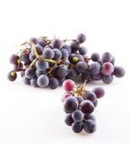 черная виноградина Стоковое Изображение