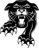 черная головная пантера Стоковые Фотографии RF