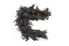Черная горжетка пера с сусалью золота Стоковые Изображения RF