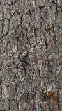 Черная деревянная предпосылка знамен стоковые фото