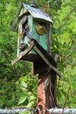 Черная змейка вползая из birdhouse стоковые фотографии rf