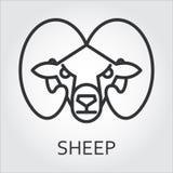 Черная линия искусство стиля значка, головная овца дикого животного, штоссель Стоковое Изображение RF