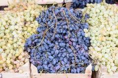 Черная и зеленая зрелая виноградина в деревянной коробке Стоковые Фотографии RF