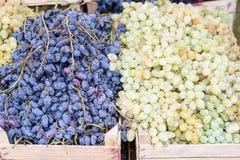 Черная и зеленая зрелая виноградина в деревянной коробке Стоковая Фотография