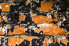 Черная и красная кирпичная стена Стоковые Изображения