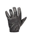 черная кожа для перчаток Стоковая Фотография RF