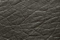 черная кожа Стоковые Фотографии RF