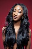 Черная красота с элегантным вьющиеся волосы стоковое изображение