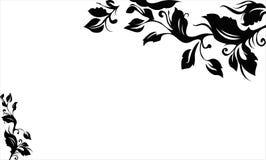 черная лоза Стоковые Фото