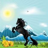 черная лошадь иллюстрация штока