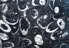 Черная мраморная каменная текстура Стоковое Изображение