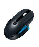 черная мышь Стоковая Фотография