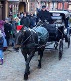 Черная лошадь в городке Орхуса старом стоковое изображение rf
