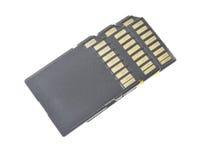 Черная память SD карточка, изолированная на белизне стоковые изображения rf